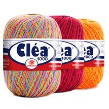 Linha-Clea-Multicolor-Circulo-Foto-Capa